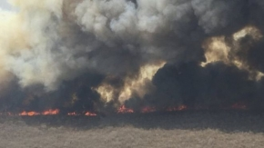 Bolivia wildfires in east extinguished by rain